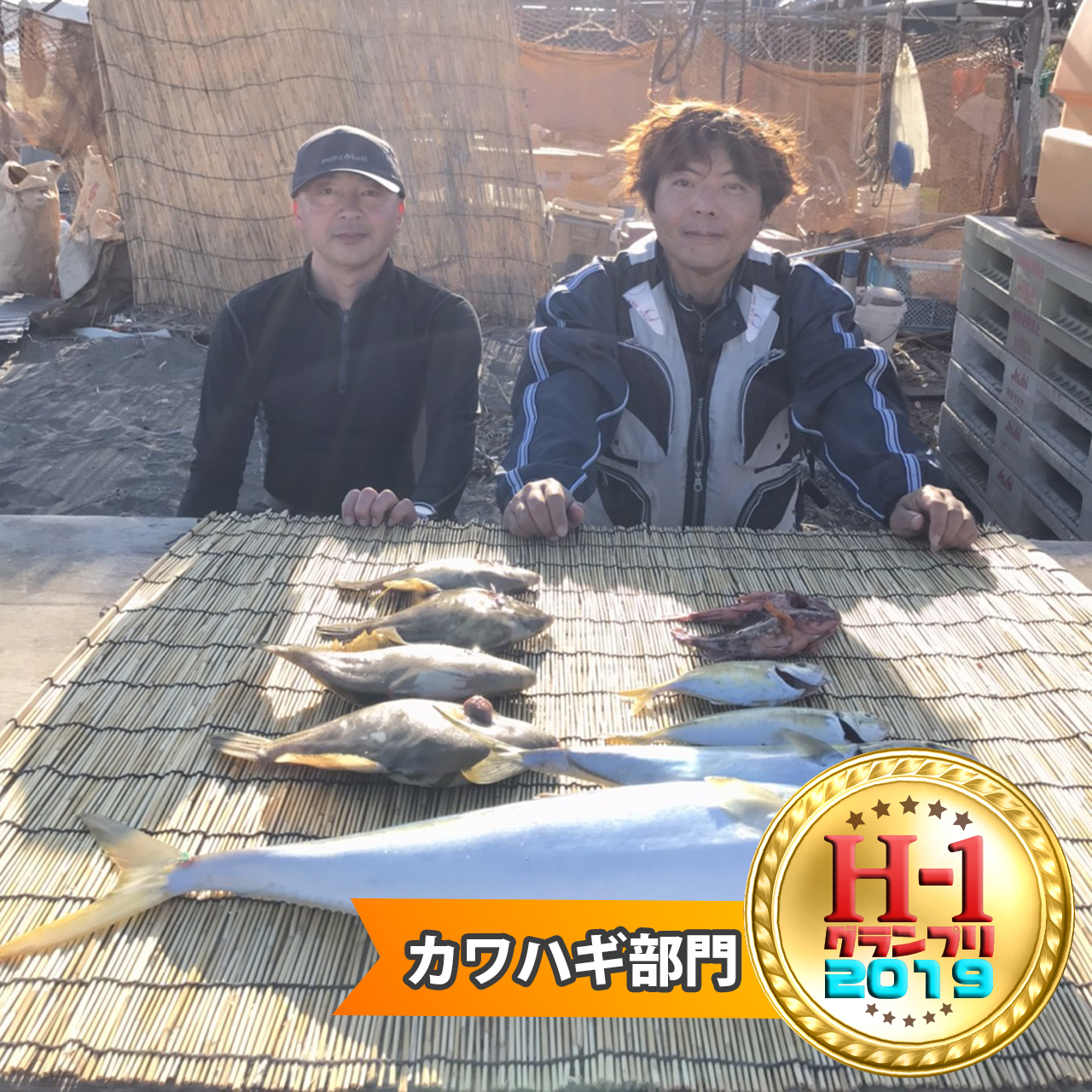 H1グランプリカワハギ部門賞