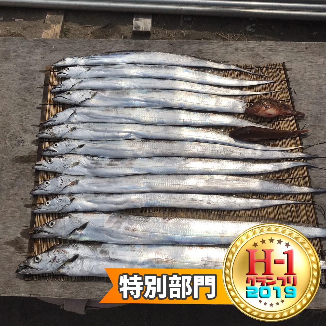H1グランプリ特別部門賞